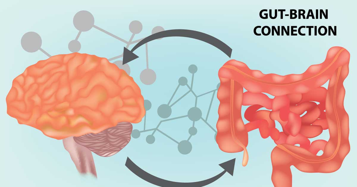 Are you wondering does gut health affect mood?